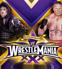 <b>送葬者vs布洛克《WWE2014摔跤狂热大赛30》视频</b>