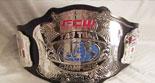 FCW_佛罗里达州冠军介绍