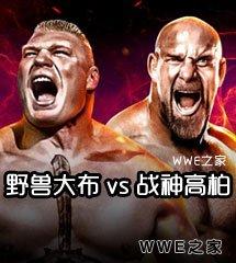 布洛克·莱斯纳 vs 战神高柏《WWE2016强者生存》经典视频