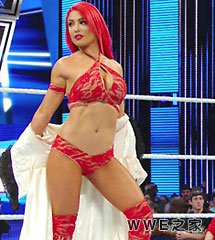 <b>WWE2016年12月8日女摔生活Total Divas第6季《第四集》</b>