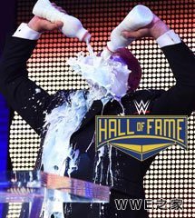 <b>WWE2016年4月1日【WWE2017名人堂】</b>