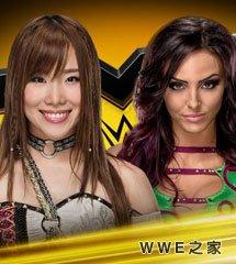<b>WWE2017年11月30日【NXT最新赛事】</b>