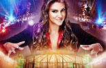 WWE2014铁笼密室淘汰赛高清壁纸