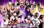 WWE摔跤狂热大赛30群星高清壁纸