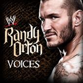 兰迪·奥顿出场音乐《Voices》