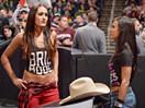 WWE李阿娇AJ女郎观战!艾玛vs尼基贝拉(布里贝拉)-RAW摔角2014年11月4日 - 狂野角斗