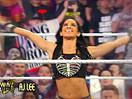 WWE摔美奖2014颁奖典礼入围名单!年度最佳Diva女子大奖(2014.12.09) - 狂野角斗士