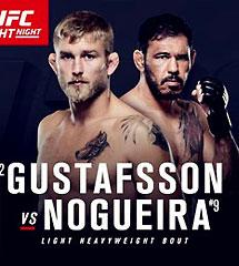 <b>UFC2016年11月20日【Fight Night 100】</b>